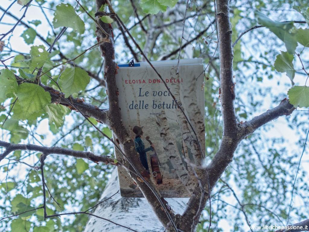 """fotografia del libro """"Le voci delle betulle"""" Di Eloisa Donadelli"""