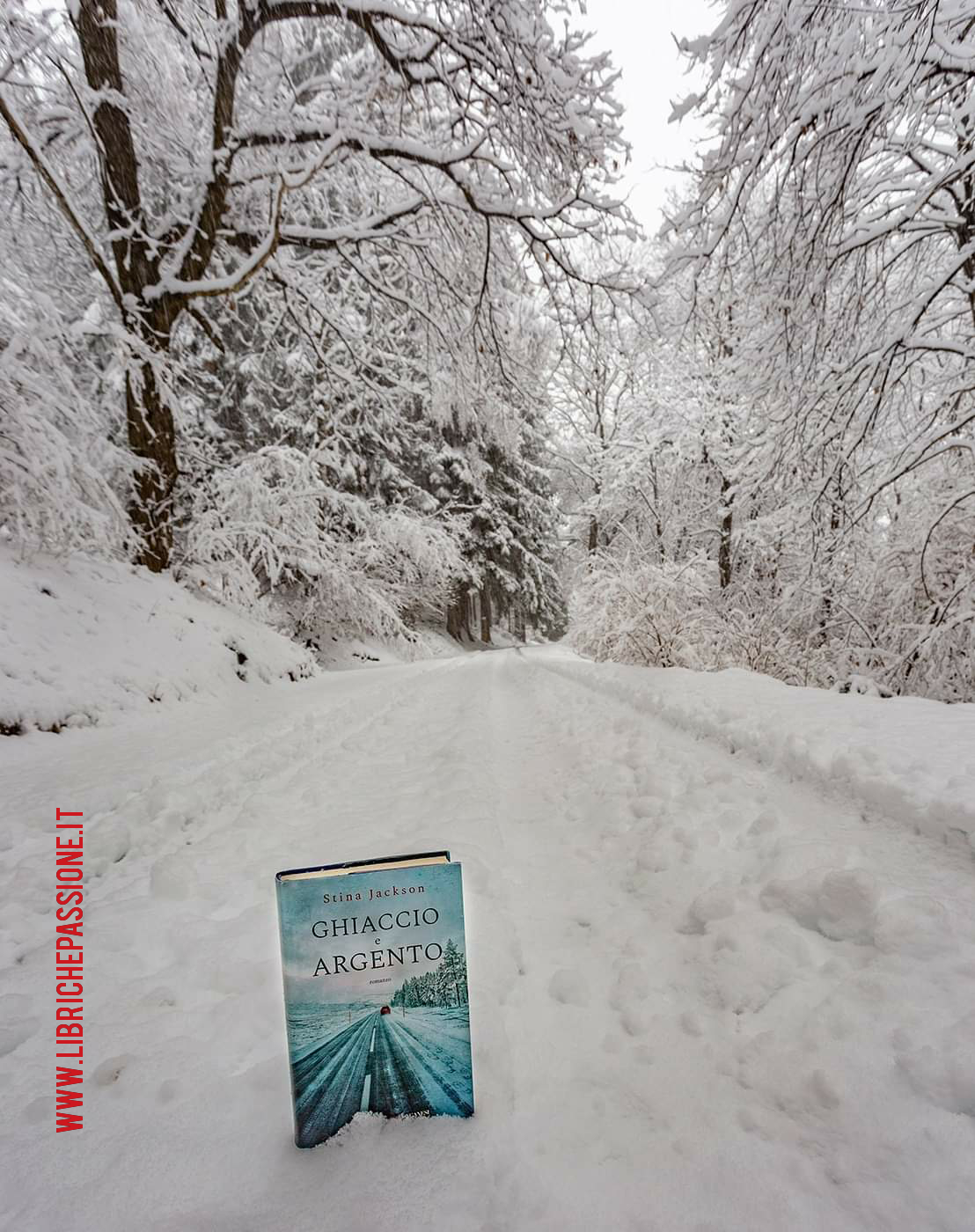 """Recensione del romanzo """"Ghiaccio e argento"""" di Stina Jackson edito da Longanesi."""