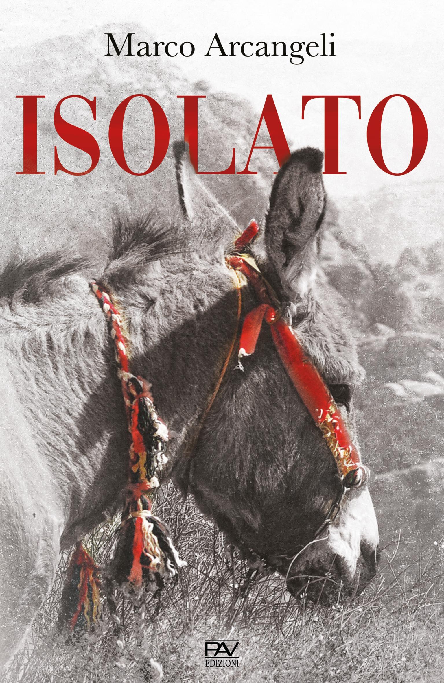 """""""Isolato"""" di Marco Arcangeli edito da Pav edizioni. Estratto"""