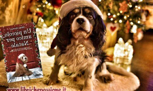 """Recensione del romanzo """"Un piccolo amico per Natale"""" di Gloria Stewart, traduzione di Donatella Semproni edito da Newton Compton"""